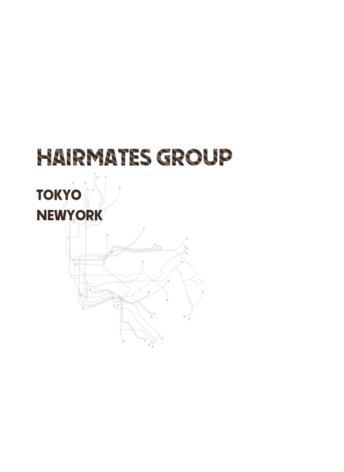 HairMates company profile-2014